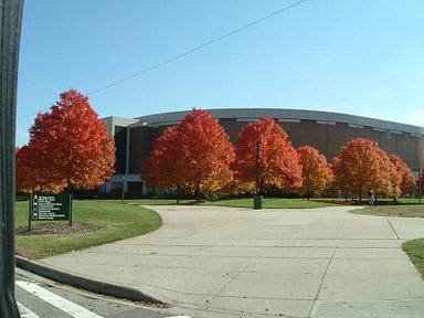 大学のバスケットボールスタジアム
